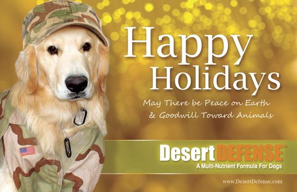 Happy Holidays from Desert DEFENSE!